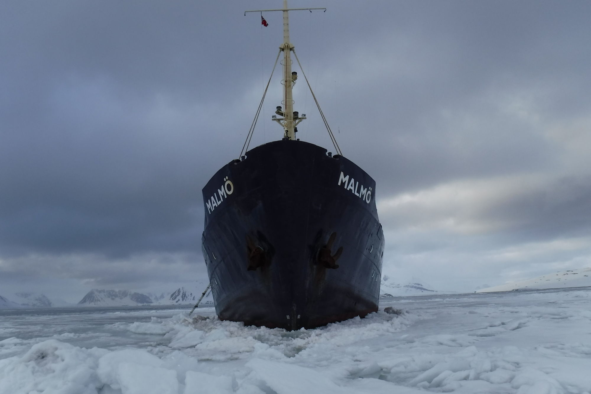 Spitsbergen. Benedeti. Sesións Especiais. OUFF