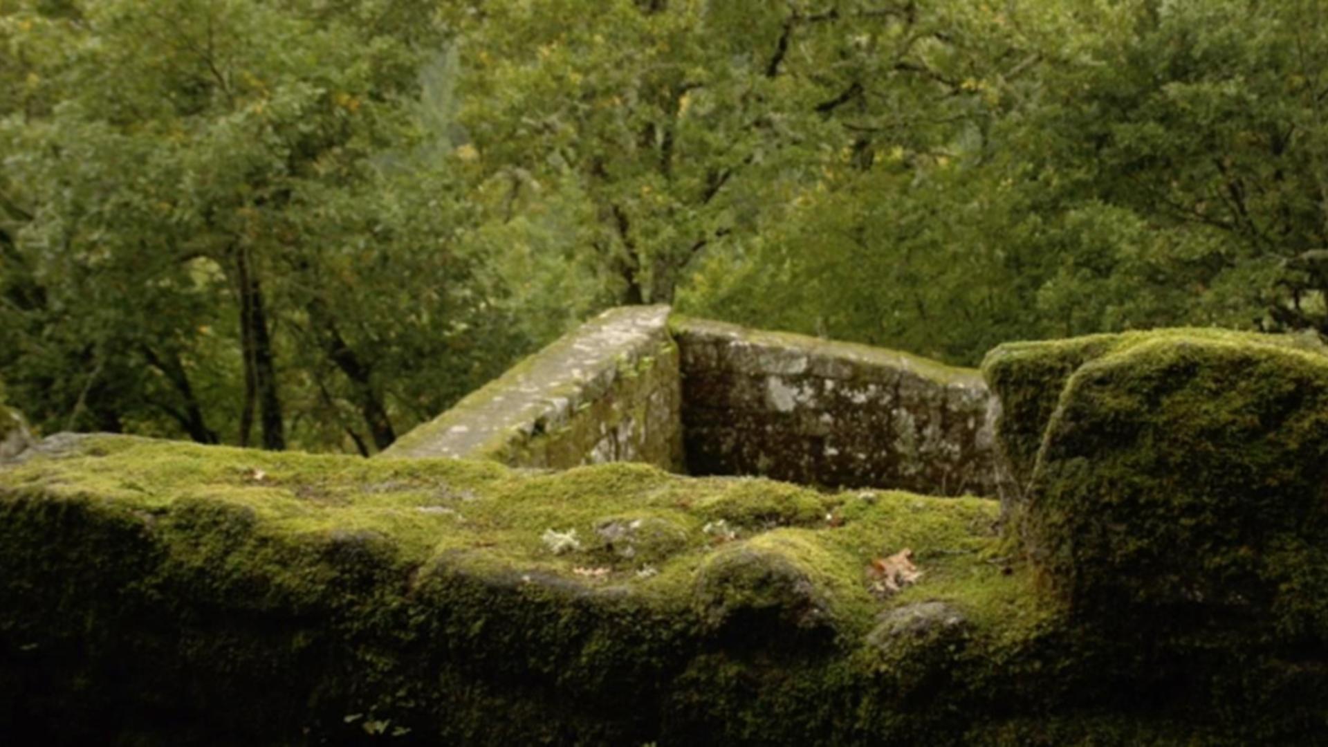 O reino suevo de Galicia
